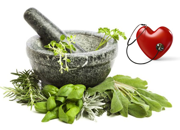 6 Best Herbs That Help Lower Cholesterol Dr Sam Robbins