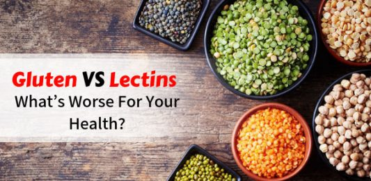 Gluten vs Lectins - What's Worse For Your Health?