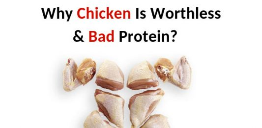 Why Chicken Is Worthless & Bad Protein