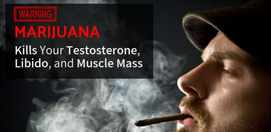 WARNING: Pot, Marijuana and THC Kills Your Testosterone, Libido, and Muscle Mass