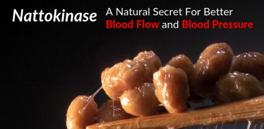 Nattokinase - A Natural Secret For Better Blood Flow and Blood Pressure