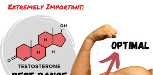 Extremely Important: Testosterone - Normal Vs Optimal Vs Best Range